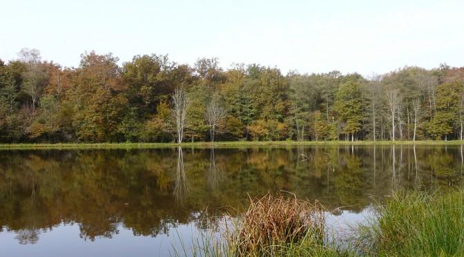 Le Pays des Vosges Saônoises