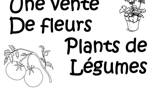 Vente de fleurs pour l'association des parents d'élèves
